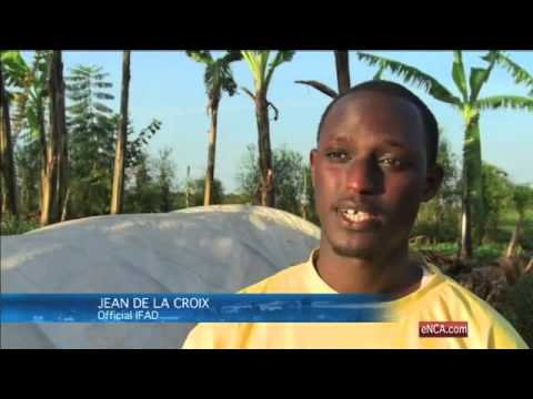 FlexiBiogas gives power to Rwandan farmers