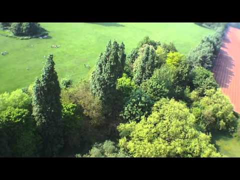 HD FPV STAINS FLYING BETWEEN TREES WORMWOOD SCRUBS RC