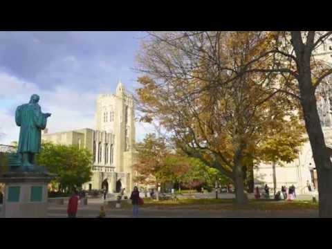 Fall in Princeton University 4K