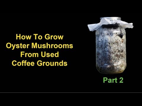 Chocolate Covered Coffee Spoons from YouTube · Duration:  13 minutes 20 seconds