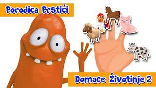 PORODICA PRSTICI - DOMACE ZIVOTINJE - SONG 2