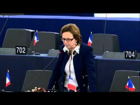 Dominique Bilde sur le rapport Erasmus +