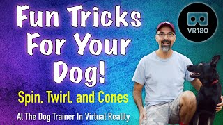 Fun Tricks for your dog! In VR 180!  Spin, Twirl, and Cones.