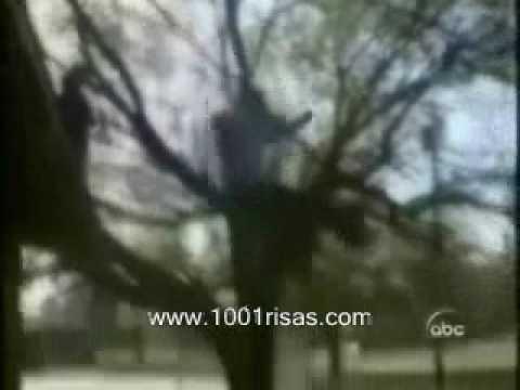 videos caseros(caidas)