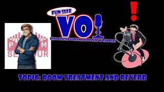 Fun Size VO: Room Treatment & Reverb