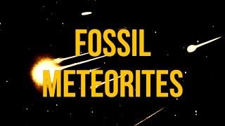 Fossil Meteorites