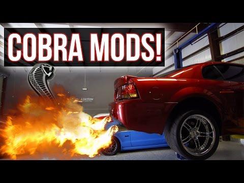 COBRA MODS!