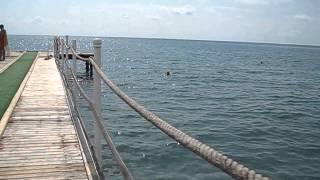 Турция. Кемер. SENTIDO. Пляжу присвоен Blue flag.(, 2013-05-15T18:33:38.000Z)