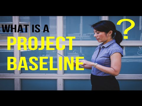 What Is A Baseline Survey And Why Is This Community Based Project Baseline Important?