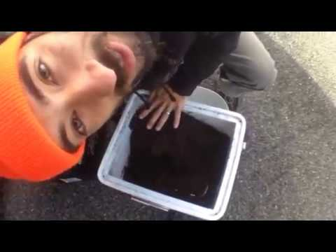 Natures Head composting toilet. - YouTube
