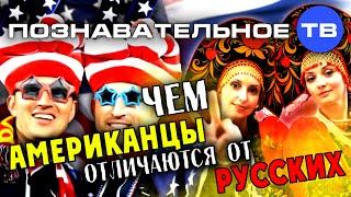 Чем американцы отличаются от русских? (Познавательное ТВ, Артак Гезумян)