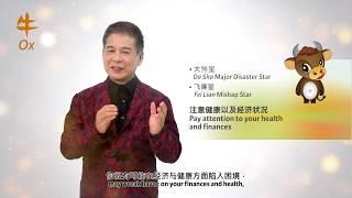 2019 Ox Zodiac Forecast by Grand Master Tan Khoon Yong