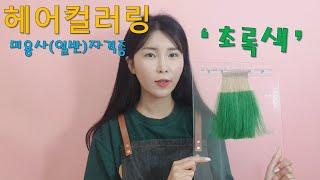 미용(일반)국가자격증/헤어컬러링'초록색'