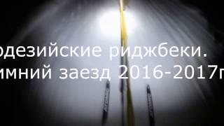 Родезийские риджбеки Зимний заезд 2016 2017