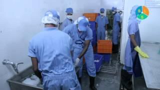 SLS Exports Pvt Ltd,Cochin,Kerala