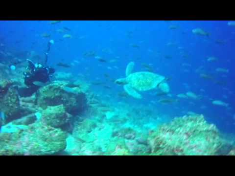 Galapagos Rebreather Trip September 2015