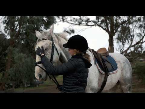 EA Horse Farm Melbourne, Victoria. 4k Drone footage