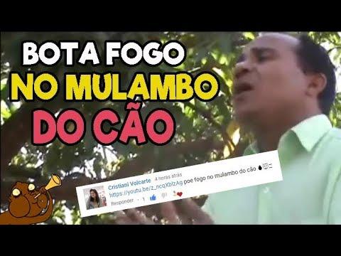 AS MELHORES MÚSICAS GOSPEL DO CANAL 8