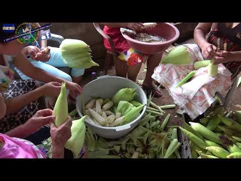 Receta Tamales de Elote, Raspando los Elotes Parte 3