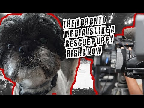 The Toronto Media is like a rescue puppy right now, I explain why...
