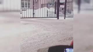 Универсальный пульт для шлагбаумов и ворот (кодграббер)
