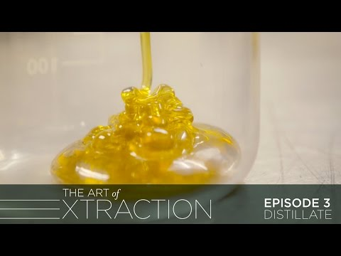 Distillate Extraction: Behind The Scenes