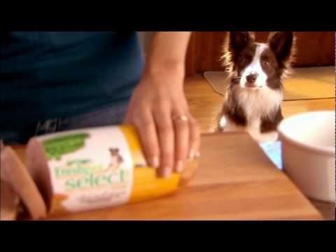 Dog Gets Beer From Fridge Commercial