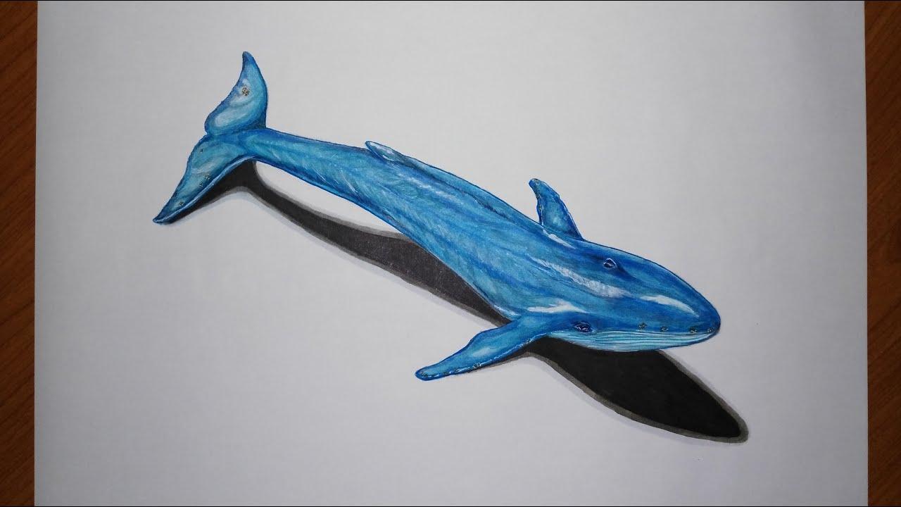ballena azul - photo #44