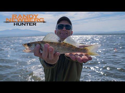 Walleye Fishing Montana With Randy Newberg