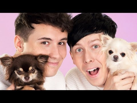 Thumbnail: Dan and Phil AND DOGS!