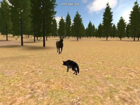 Wolf quest o urso mais rapido do mundo