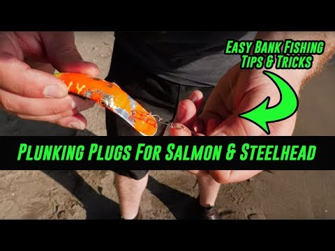 How To Plunk Salmon & Steelhead With Plugs - EASY BANK FISHING SETUP