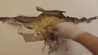 NUEVO VIDEO BENNN FACEBOOK SALE UNA MANO HUMAN4 EN UNA PARED (BEN AND ED EASTER EGG)