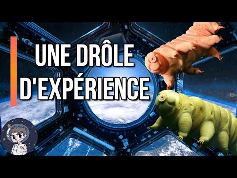 TARDIGRADE: Une drôle d'expérience sur l'ISS - Le Journal de l'Espace #87 - Actualité
