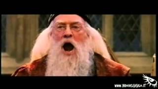 Nido del Cuculo - Io Doppio Vintage - Harry Potter - Arriva la bomba