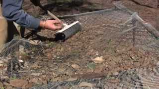 Ghost Town Metal Detecting And Relic And Coin Sifting
