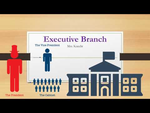 Executive Branch Lesson