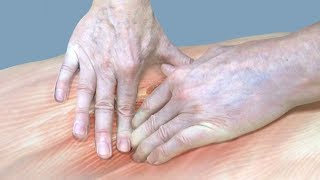 Мышечно-тоническое напряжение. Причины ослабления мышц, работа с гипертонусом в шведском массаже