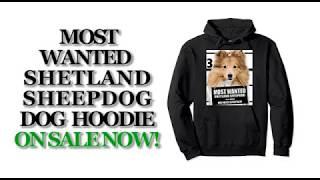 Most Wanted Shetland Sheepdog Funny Dog Hoodies - Men's, Women's, Kid's - Black, Grey,  Heather