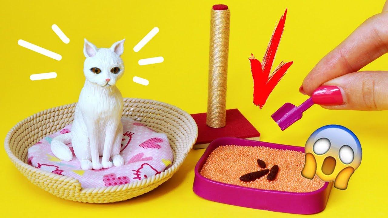 Аксессуары для кошек своими руками фото 891