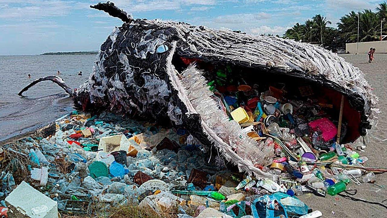 Самые Поражающие Свалки в Мире — Вот к Чему Приводит Загрязнение Окружающей Среды