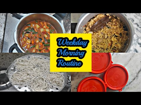   Morning Routine   What I Have Packed In My Kids Lunch Box   Kids Lunch Box Idea  