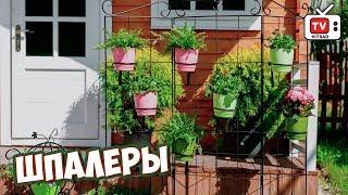 видео Шпалера для вьющихся растений, огурцов и винограда, виды озеленения.