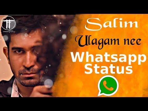 Salim   Motivational song / Status  ...