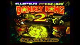 サルと爬虫類の戦いスーパードンキーコング2やるよ!