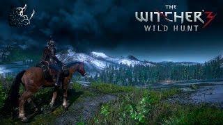 The Witcher 3: Wild Hunt [#28] Мечи сета Грифона