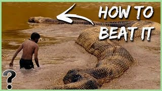 How Could You Defeat A Titanoboa Snake?