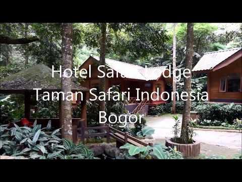 Review : Hotel Safari Lodge at Taman Safari Indonesia Bogor