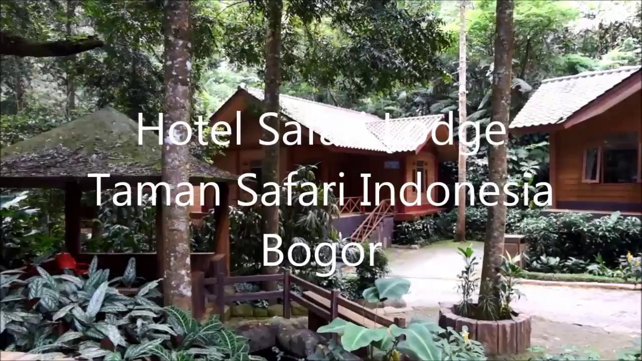 Review : Hotel Safari Lodge at Taman Safari Indonesia ...