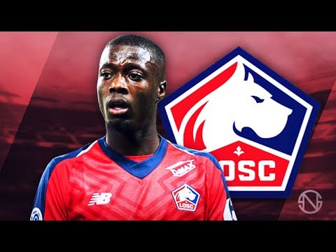 NICOLAS PEPE - Amazing Speed, Skills, Goals & Assists - 2018/2019 (HD)